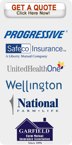 Insurance companies offered by Buesing Insurance in Victoria